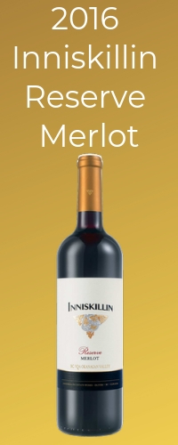 recommended merlot for pairing with beef stew