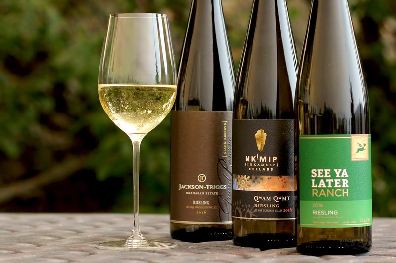 what glass to use for riesling gewurztraminer pinot gris sauvignon blanc zinfandel